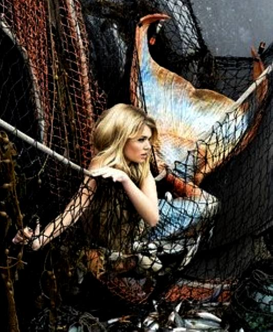 Mermaid trapped in a fishing trawlers nets